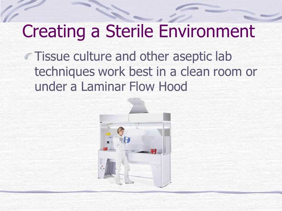 Creating a Sterile Environment Tissue culture and other aseptic lab techniques work best in a clean room or under a Laminar Flow Hood