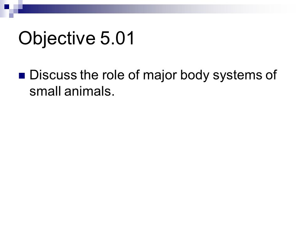 Essential Standard 5.00 Discuss the role of major systems of small animals.