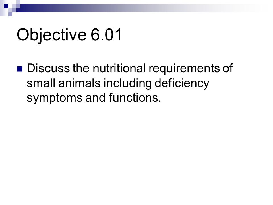 Essential Standard 6.00 Examine the role of nutrition in the support of animal life.