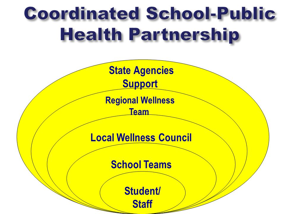 Community Local Wellness Council School Teams Student/ Staff Regional Wellness Team State Agencies Support