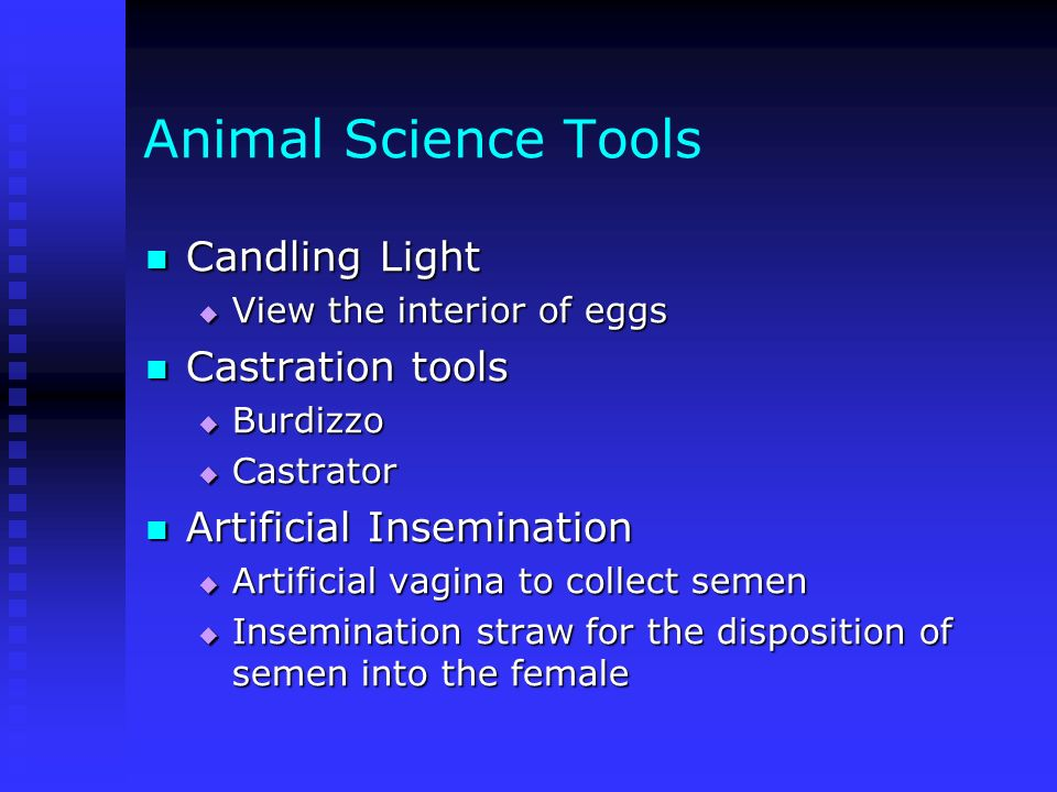 Animal Science Tools Candling Light Candling Light View the interior of eggs View the interior of eggs Castration tools Castration tools Burdizzo Burd