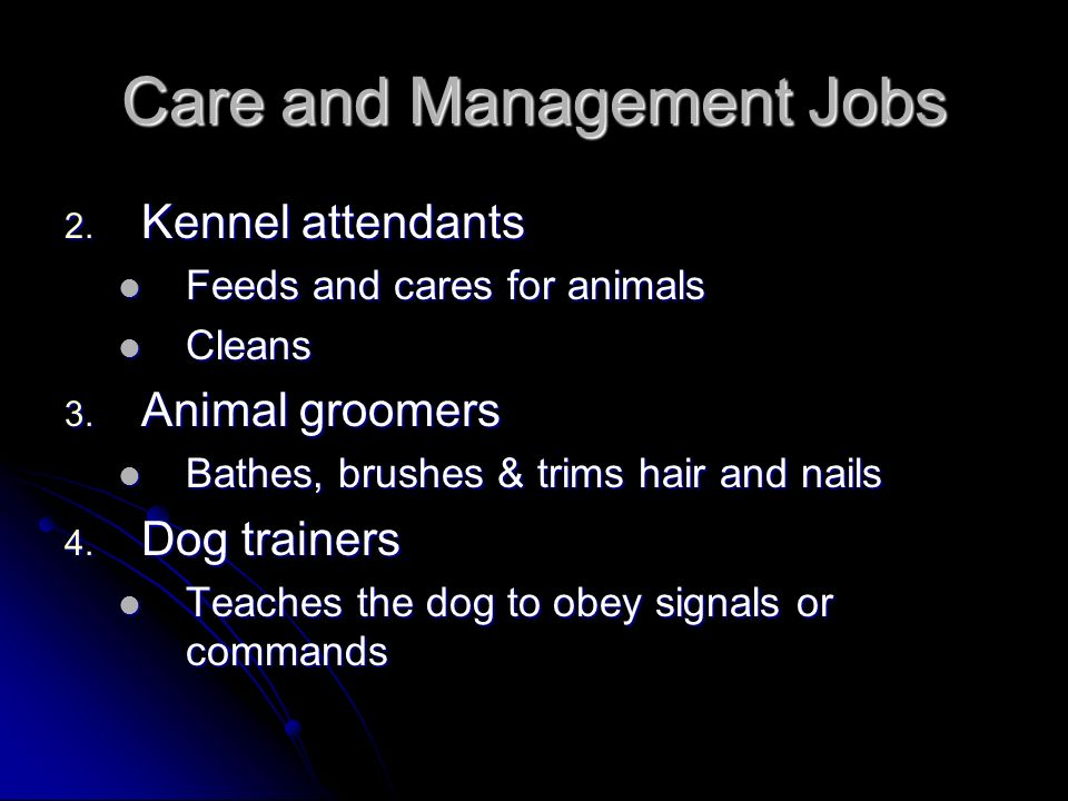Care and Management Jobs 2. Kennel attendants Feeds and cares for animals Feeds and cares for animals Cleans Cleans 3. Animal groomers Bathes, brushes