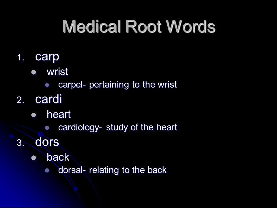 Medical Root Words 1. carp wrist wrist carpel- pertaining to the wrist carpel- pertaining to the wrist 2. cardi heart heart cardiology- study of the h