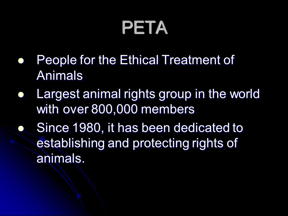 PETA People for the Ethical Treatment of Animals People for the Ethical Treatment of Animals Largest animal rights group in the world with over 800,00