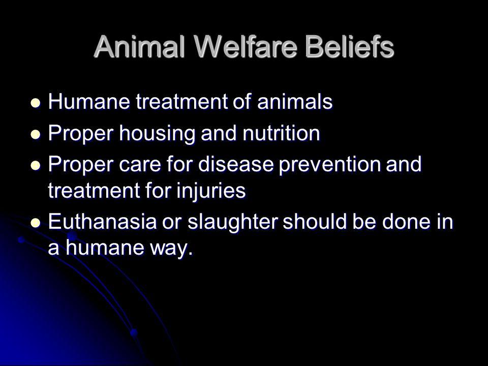 Animal Welfare Beliefs Humane treatment of animals Humane treatment of animals Proper housing and nutrition Proper housing and nutrition Proper care f