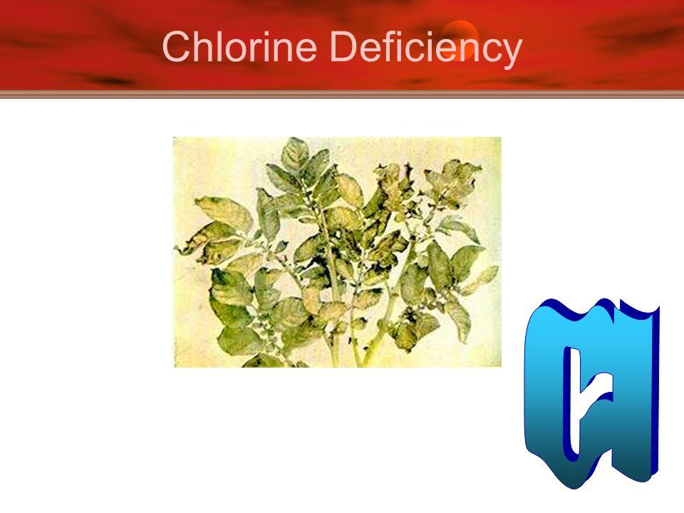Chlorine Deficiency