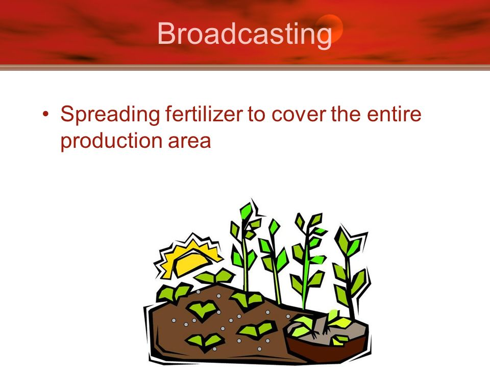 Broadcasting Spreading fertilizer to cover the entire production area