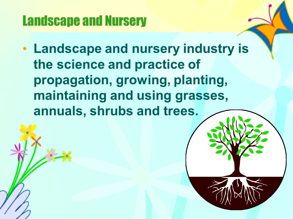 Landscape and Nursery Landscape and nursery industry is the science and practice of propagation, growing, planting, maintaining and using grasses, annuals, shrubs and trees.