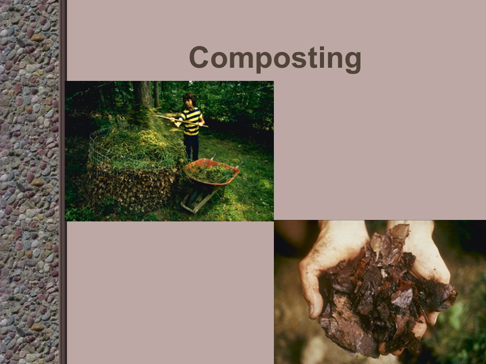 Types of organic matter Compost bark-particles too large to use in seed germination media mulch-used to cover soil to help hold moisture and prevent weeds straw peat moss