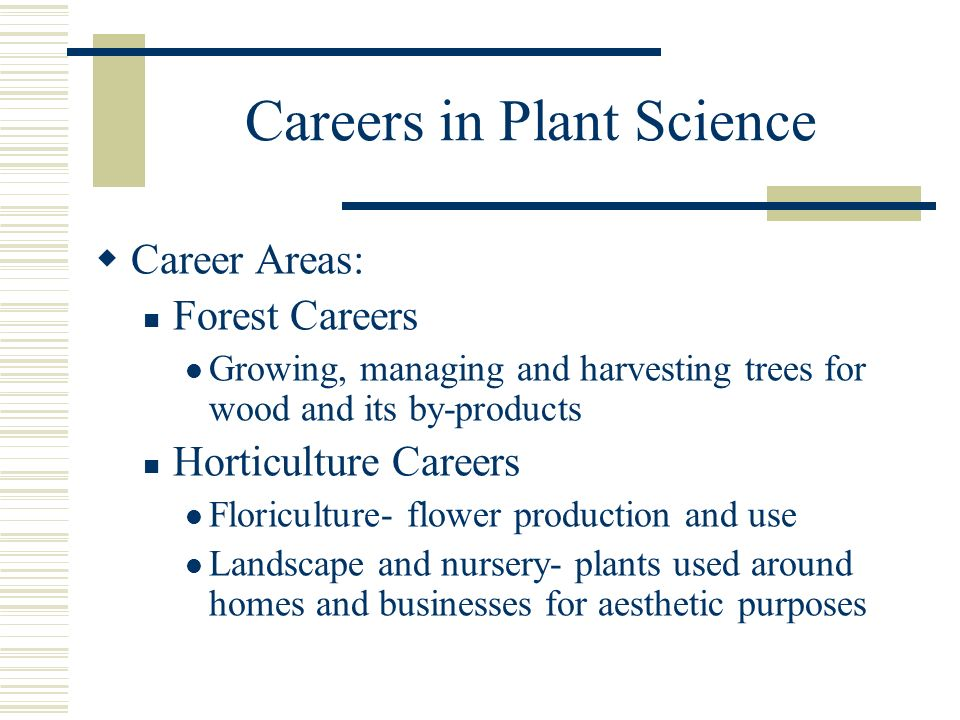 Careers in Plant Science Career Areas: Forest Careers Growing, managing and harvesting trees for wood and its by-products Horticulture Careers Floricu