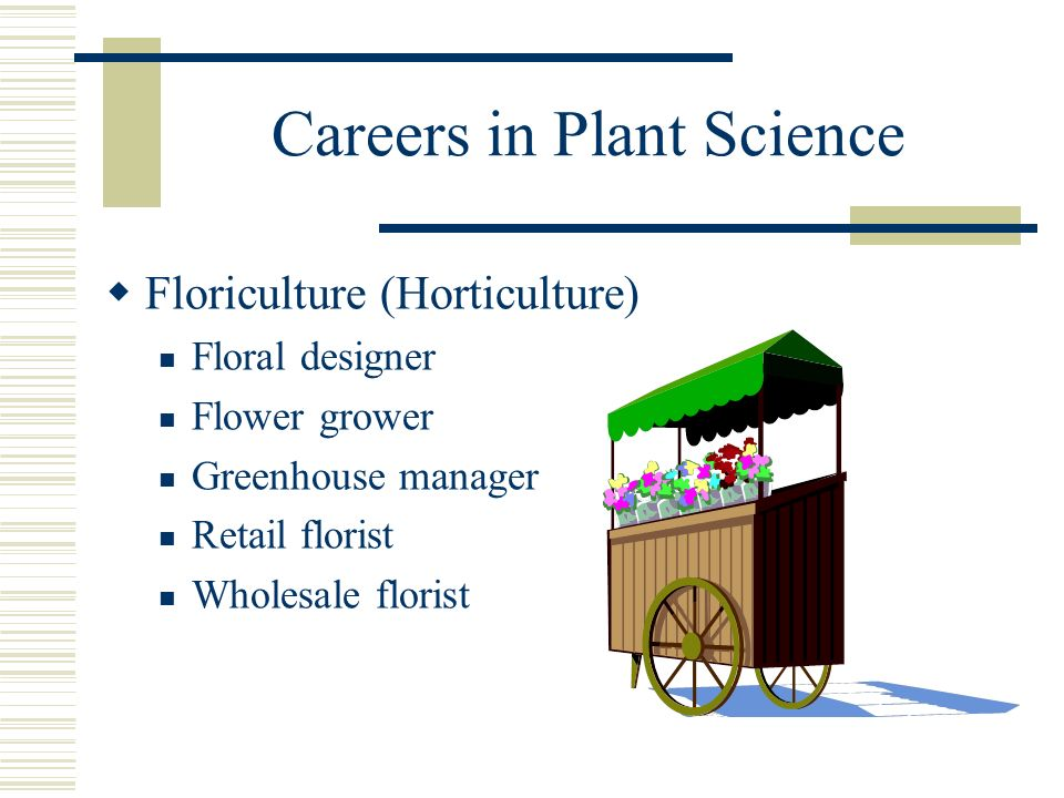Careers in Plant Science Floriculture (Horticulture) Floral designer Flower grower Greenhouse manager Retail florist Wholesale florist