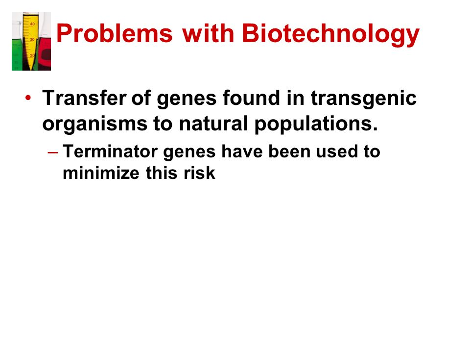 Problems with Biotechnology Transfer of genes found in transgenic organisms to natural populations. –Terminator genes have been used to minimize this