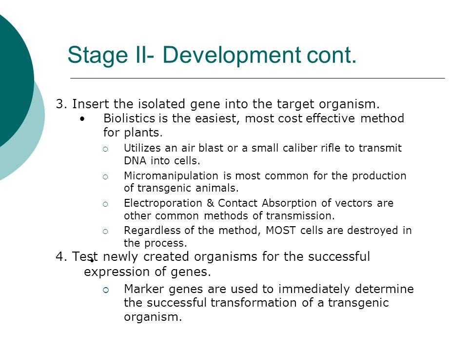 Stage II- Development cont. 3. Insert the isolated gene into the target organism.