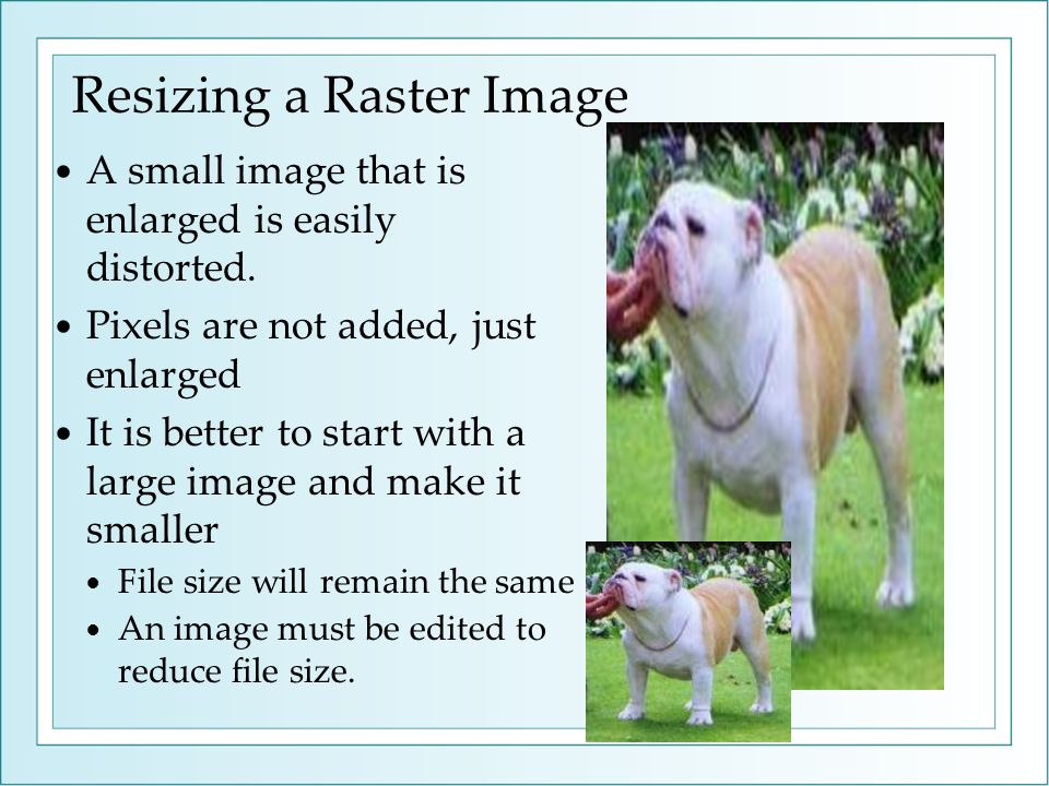 Resizing a Raster Image A small image that is enlarged is easily distorted. Pixels are not added, just enlarged It is better to start with a large ima