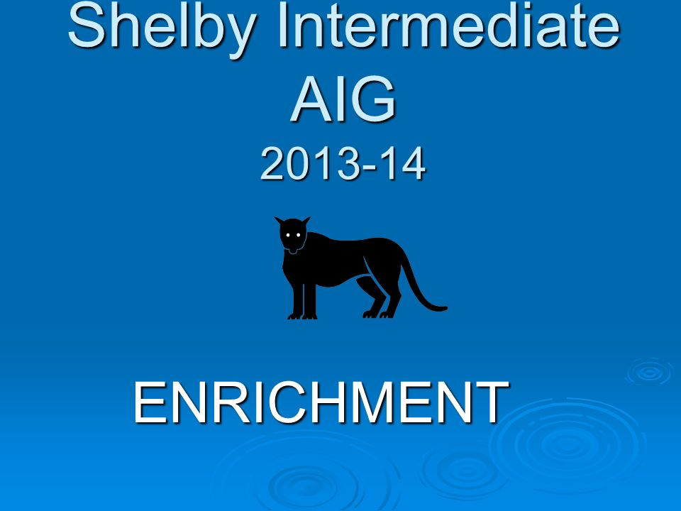 Shelby Intermediate AIG 2013-14 ENRICHMENT