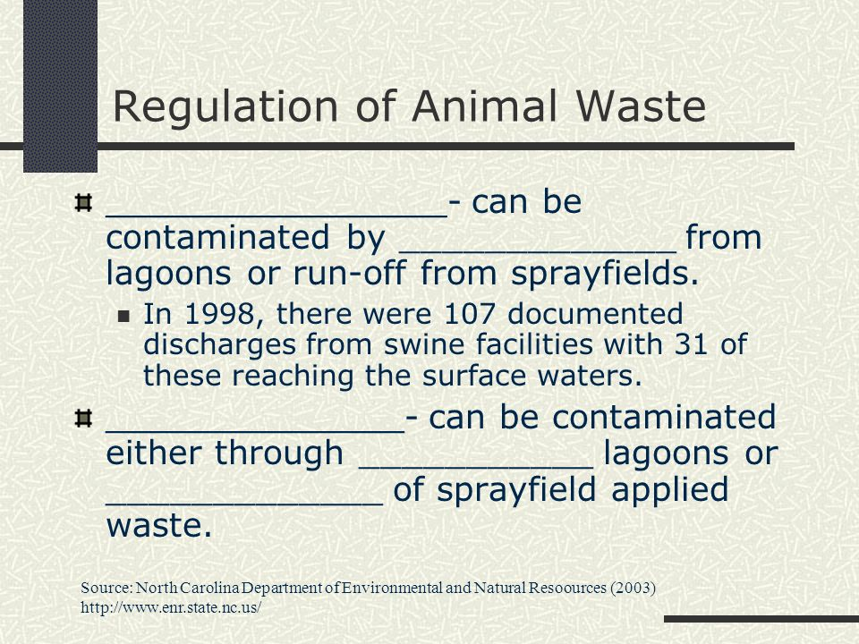 Regulation of Animal Waste ________________- can be contaminated by _____________ from lagoons or run-off from sprayfields. In 1998, there were 107 do