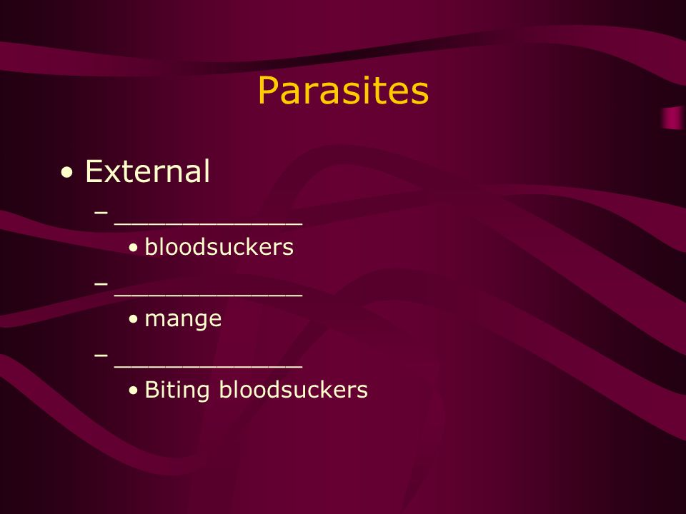 Parasites External –___________ bloodsuckers –___________ mange –___________ Biting bloodsuckers