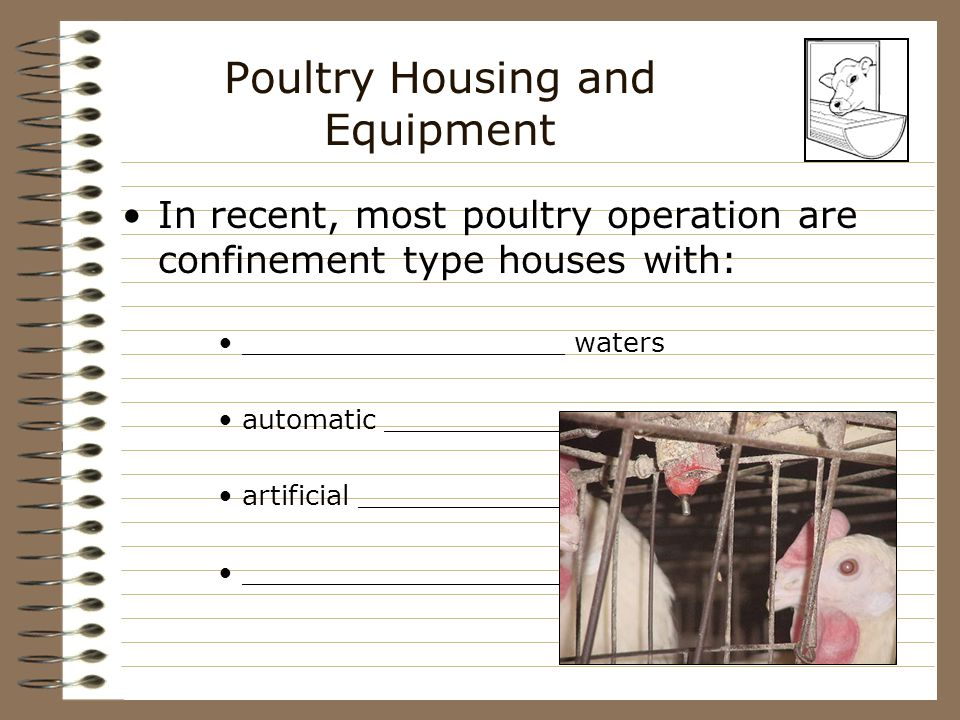 Poultry Housing and Equipment In recent, most poultry operation are confinement type houses with: ___________________ waters automatic ________________ artificial __________________ ______________________ ventilation