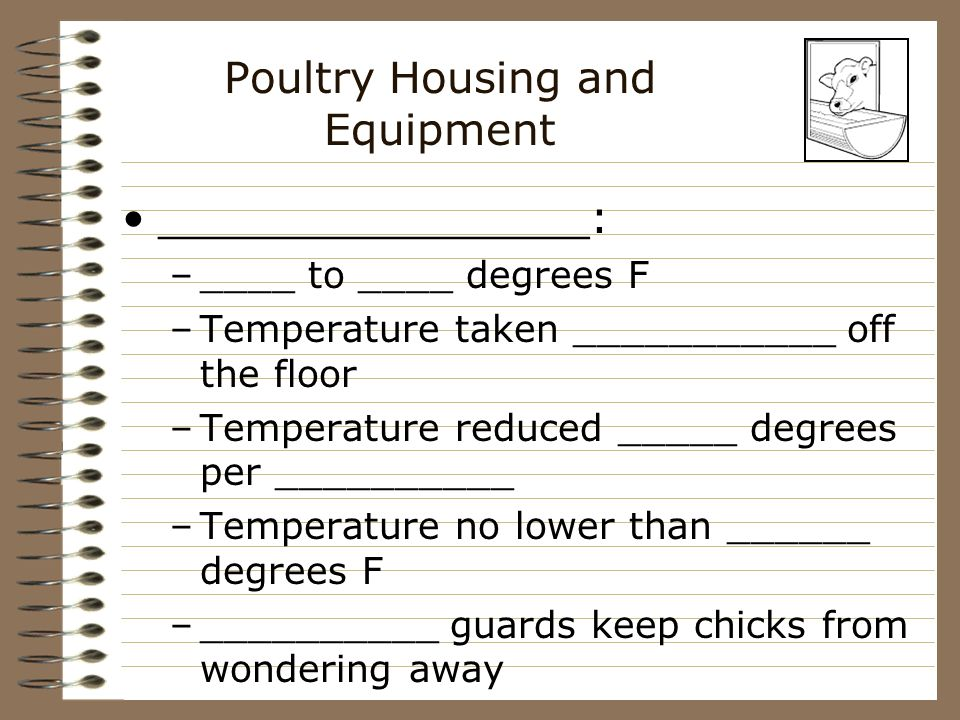Poultry Housing and Equipment Broiler and turkey houses: –used for ____________ type animals –_____________ floors –covered with ____________ wood ________________ newspaper _________________ –lights are on _____________ per day
