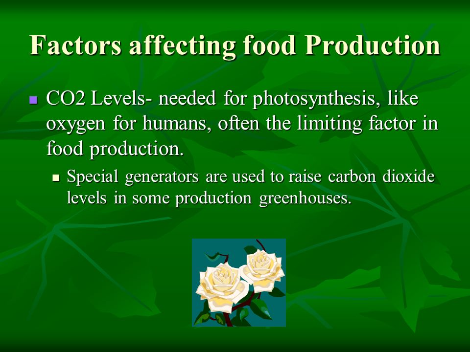 Factors affecting food Production CO2 Levels- needed for photosynthesis, like oxygen for humans, often the limiting factor in food production. CO2 Lev