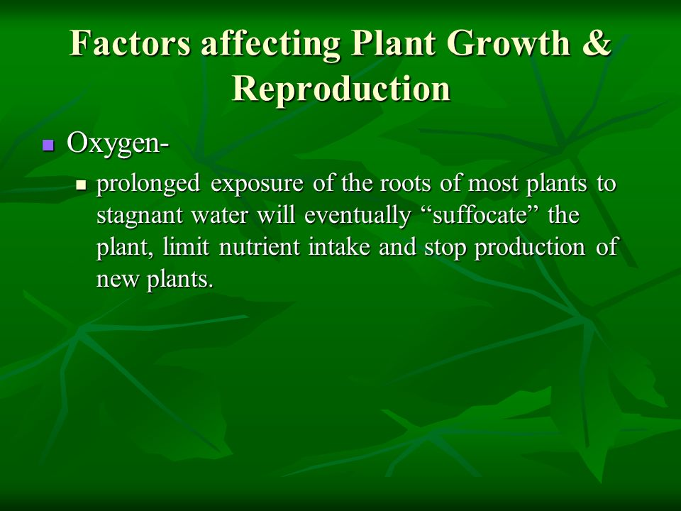 Factors affecting Plant Growth & Reproduction Oxygen- Oxygen- prolonged exposure of the roots of most plants to stagnant water will eventually suffoca