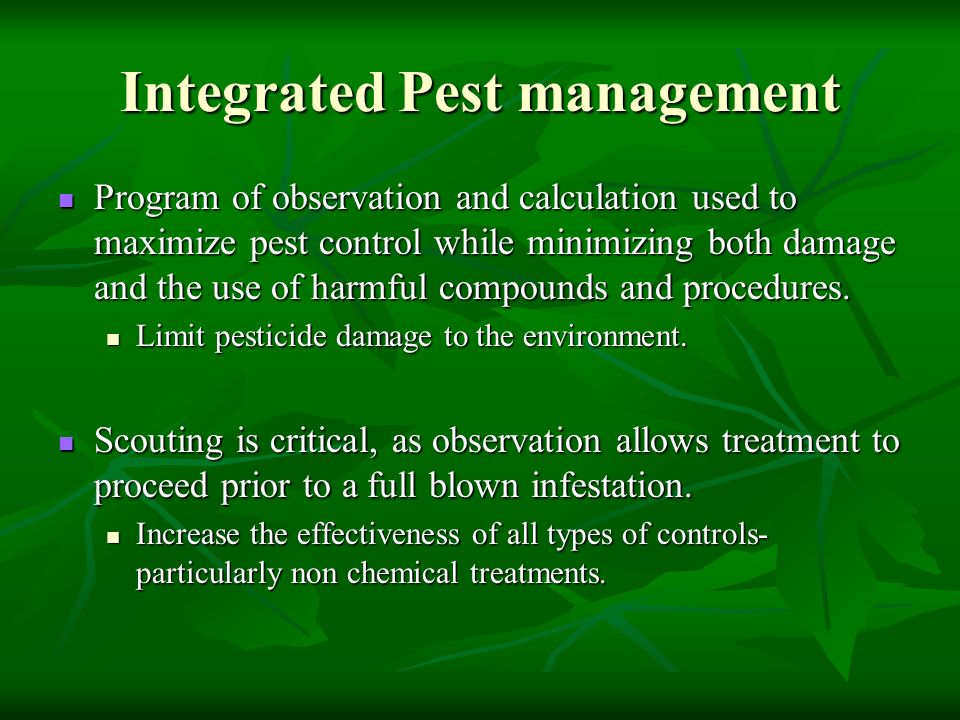 Integrated Pest management Program of observation and calculation used to maximize pest control while minimizing both damage and the use of harmful co