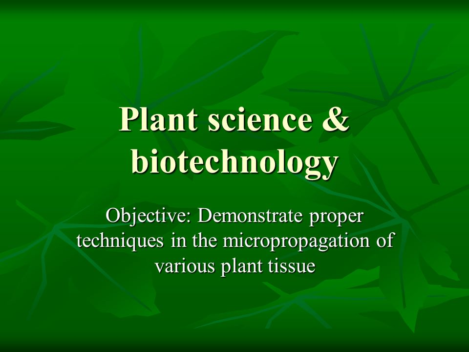 Plant science & biotechnology Objective: Demonstrate proper techniques in the micropropagation of various plant tissue