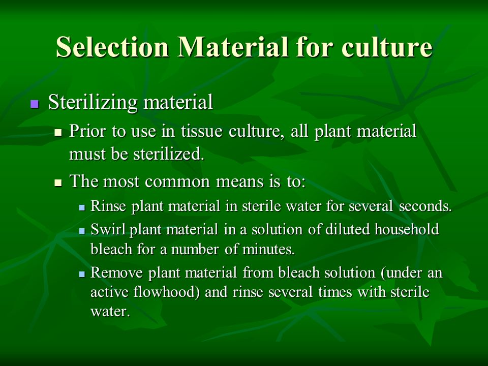 Selection Material for culture Sterilizing material Sterilizing material Prior to use in tissue culture, all plant material must be sterilized. Prior