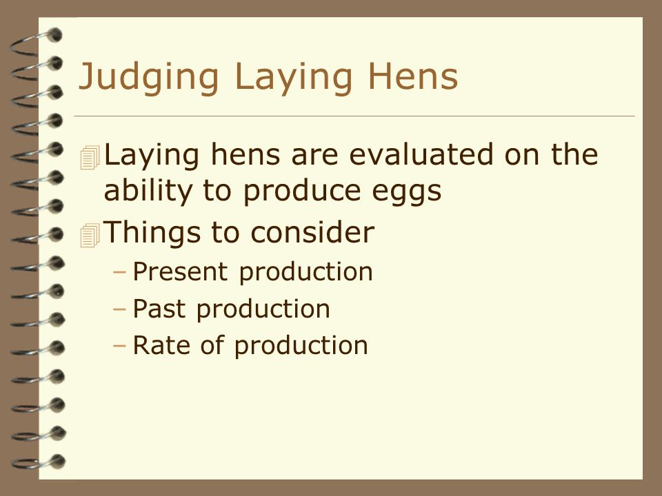 Judging Laying Hens 4 Laying hens are evaluated on the ability to produce eggs 4 Things to consider –Present production –Past production –Rate of prod