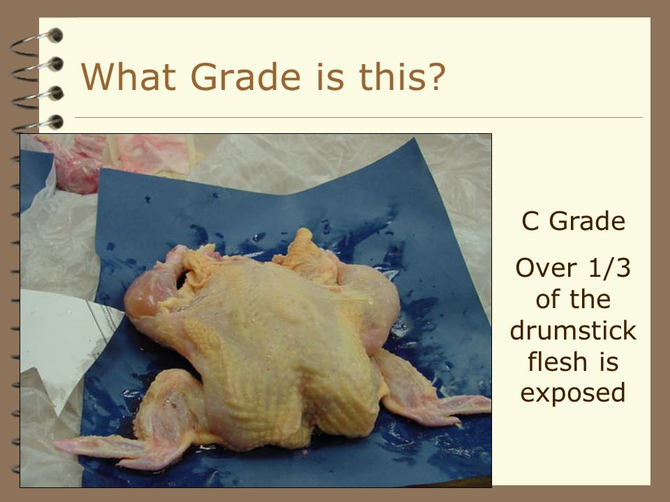 C Grade Over 1/3 of the drumstick flesh is exposed What Grade is this?