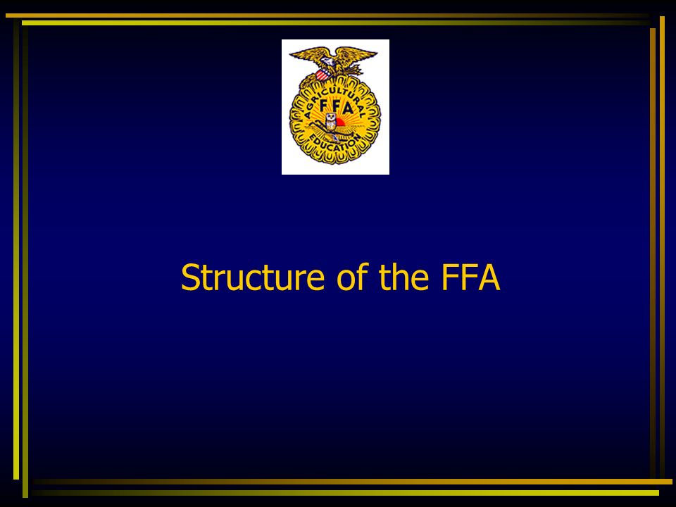 Structure of the FFA