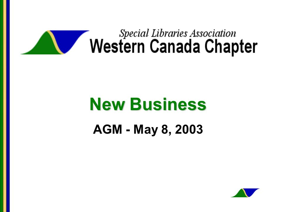 New Business AGM - May 8, 2003