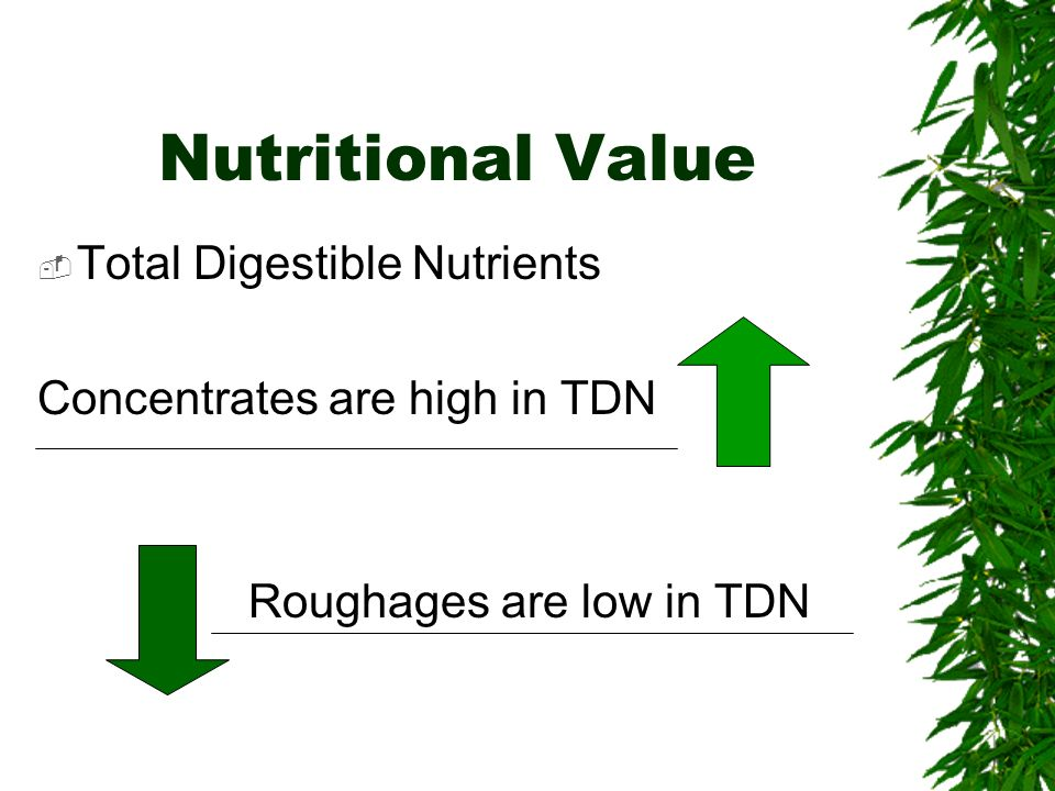 Nutritional Value Total Digestible Nutrients Concentrates are high in TDN Roughages are low in TDN