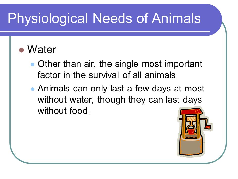 Physiological Needs of Animals Other Important Inorganic Nutrients Vitamins B12, A, E, C, etc.