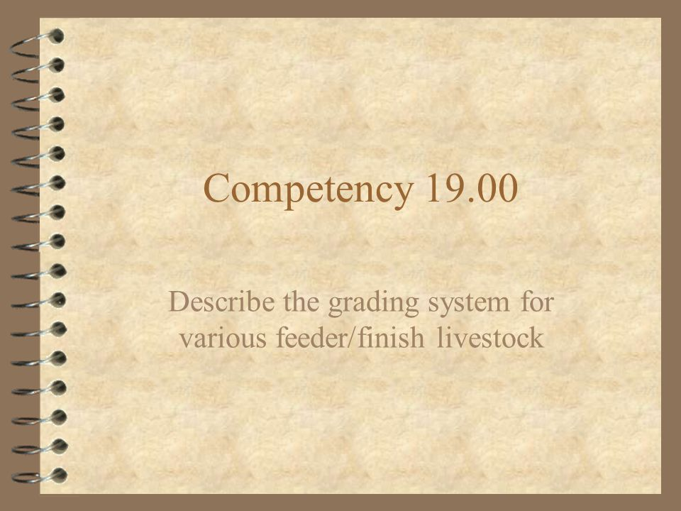 Objective 19.01 4 Describe the grading system for various feeder/finish livestock