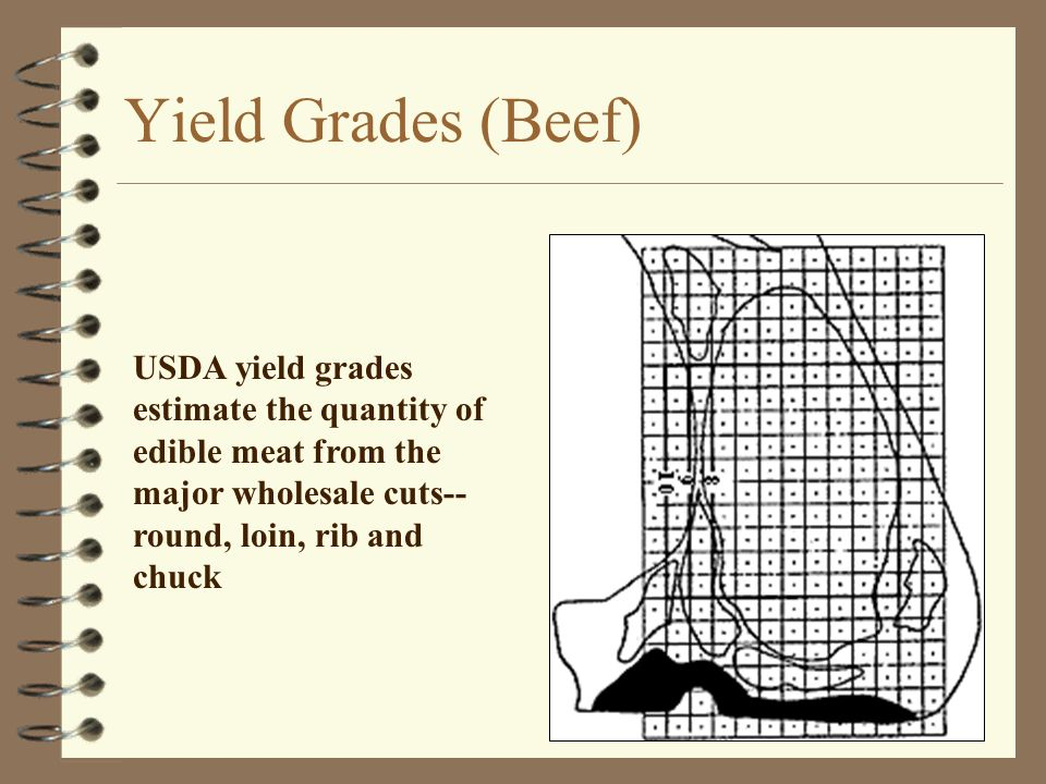 Yield Grades (Beef) USDA yield grades estimate the quantity of edible meat from the major wholesale cuts-- round, loin, rib and chuck
