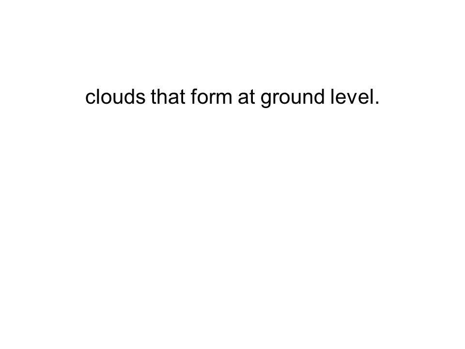 clouds that form at ground level.