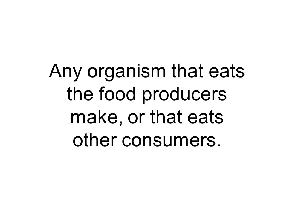 Any organism that eats the food producers make, or that eats other consumers.
