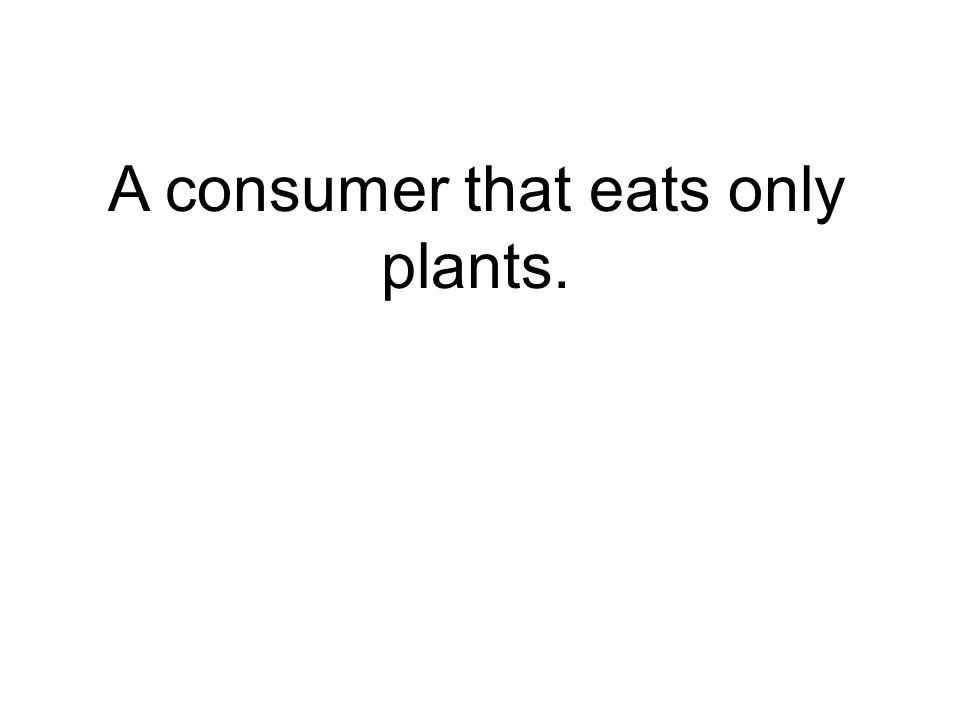 A consumer that eats only plants.