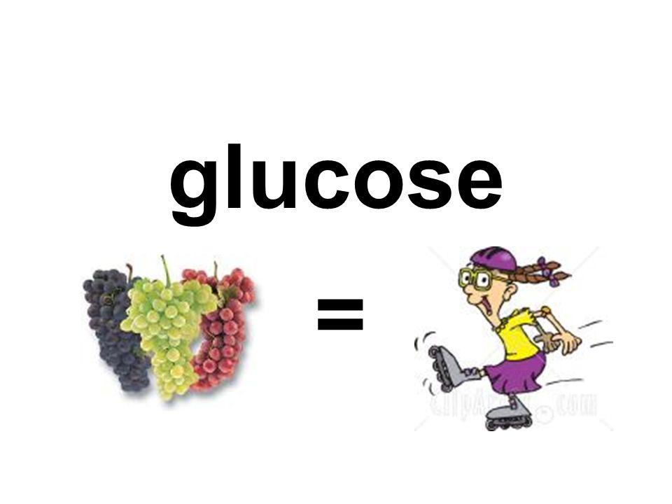 glucose =