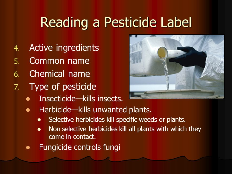 Reading a Pesticide Label 4. 4. Active ingredients 5. 5. Common name 6. 6. Chemical name 7. 7. Type of pesticide Insecticidekills insects. Herbicideki