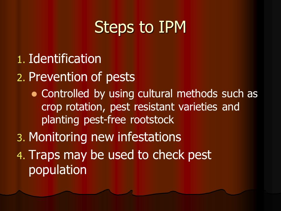 Steps to IPM 1. 1. Identification 2. 2. Prevention of pests Controlled by using cultural methods such as crop rotation, pest resistant varieties and p