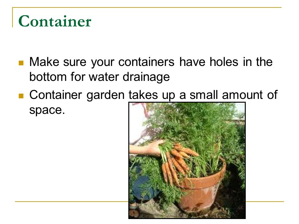 Container Make sure your containers have holes in the bottom for water drainage Container garden takes up a small amount of space.