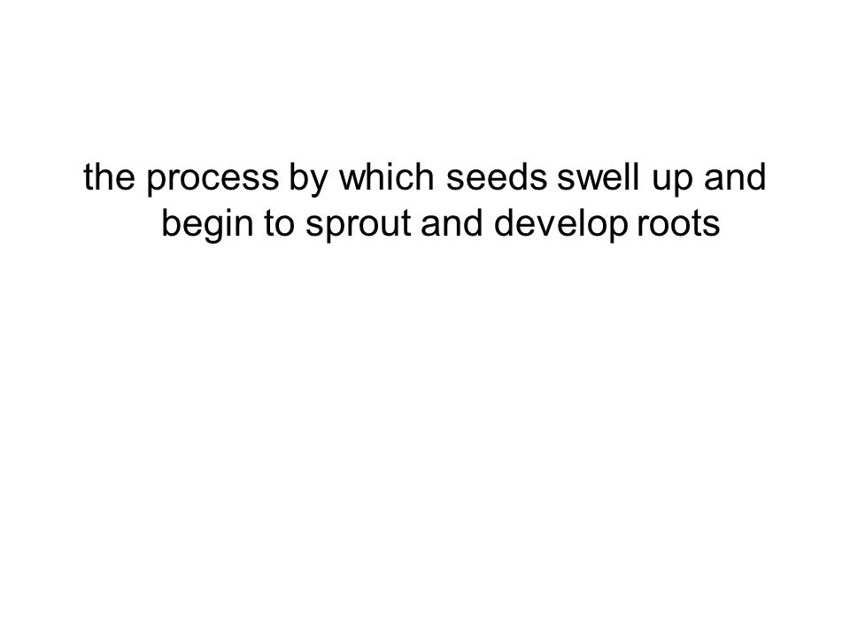 the process by which seeds swell up and begin to sprout and develop roots