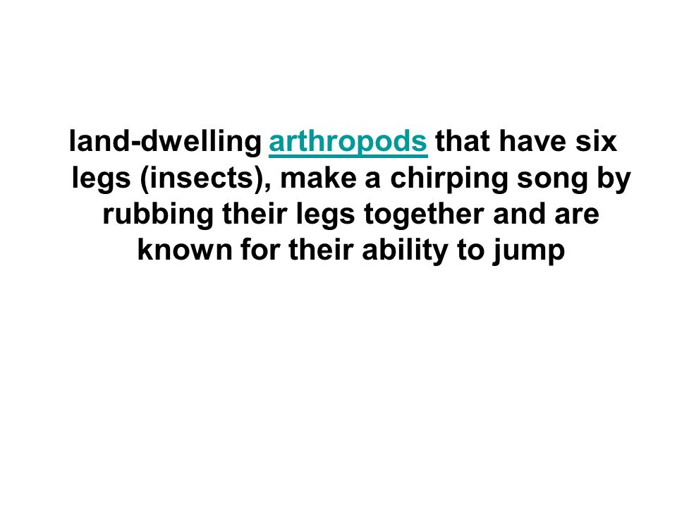 land-dwelling arthropods that have six legs (insects), make a chirping song by rubbing their legs together and are known for their ability to jumparthropods