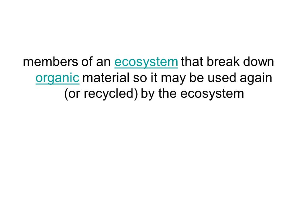 members of an ecosystem that break down organic material so it may be used again (or recycled) by the ecosystemecosystem organic