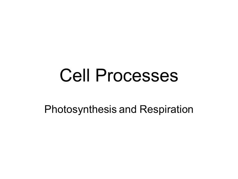 Photosynthesis Nearly all living things get their energy either directly or indirectly from energy of sunlight.