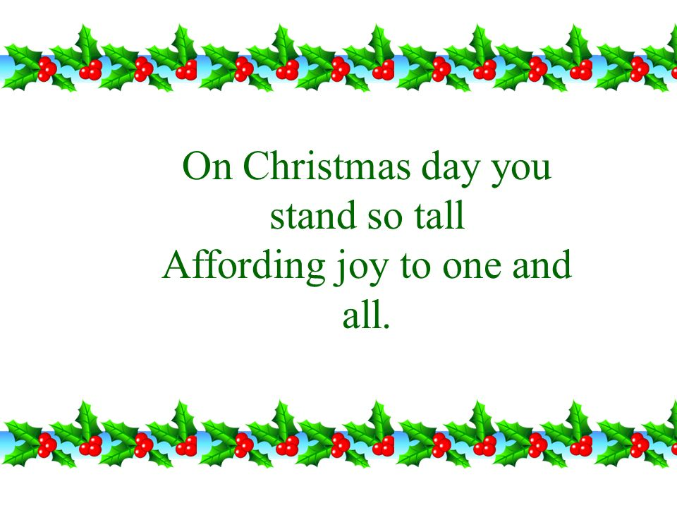 On Christmas day you stand so tall Affording joy to one and all.