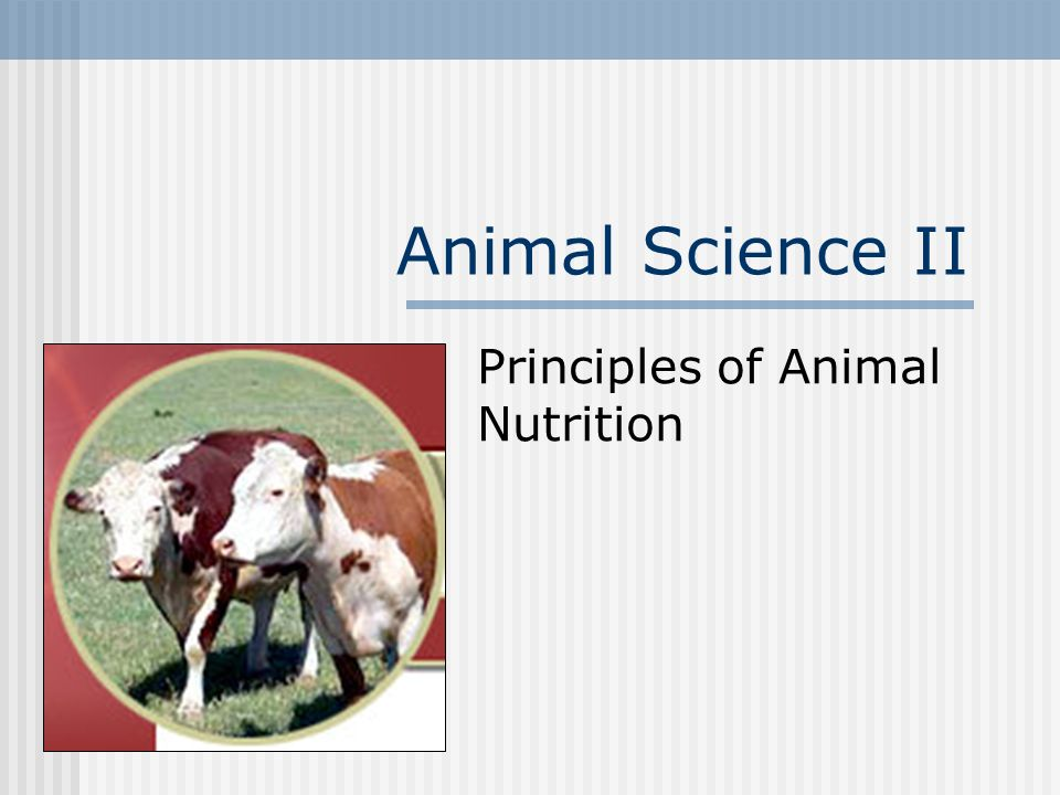Animal Science II Principles of Animal Nutrition