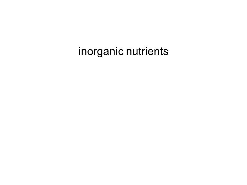 inorganic nutrients